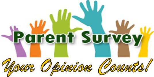 School Opinion Survey 2017